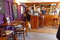 Bar at Miner's Arms in Mithian