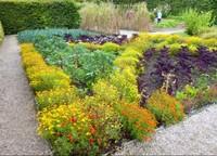 Sizergh Castle - Gardens