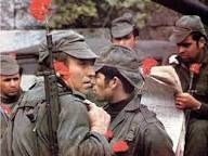 This is not my photo but shows the real Carnation Revolution as it happened.