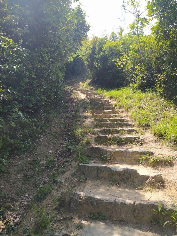 And more steps.