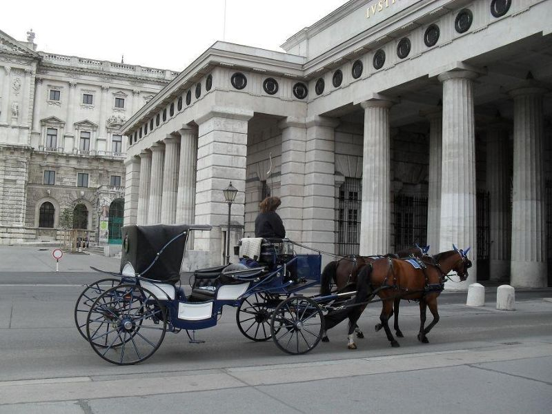 Fiaker taking tourists round the city - Vienna