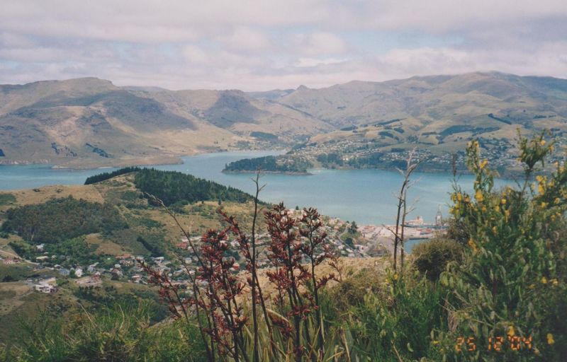 large_473007446763577-View_from_Ch..ew_Zealand.jpg