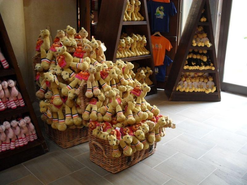 large_5109681-Cuddly_camels_at_the_souq_Dubai.jpg