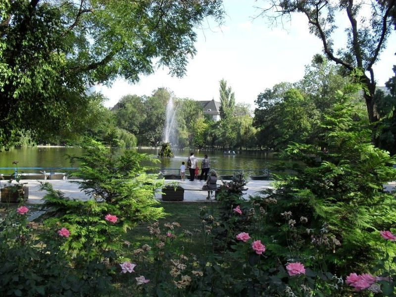 Pretty flowers and lakes - Bucharest