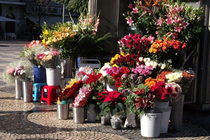 Flower stall, Rossio Square. - Lisbon