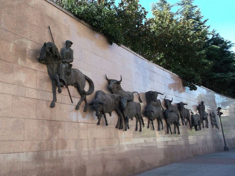 Leading in the bulls. - Madrid