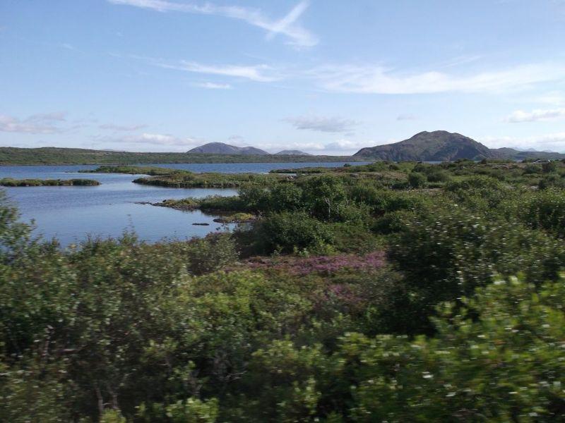Marvellous scenery on the tour. - Reykjavík