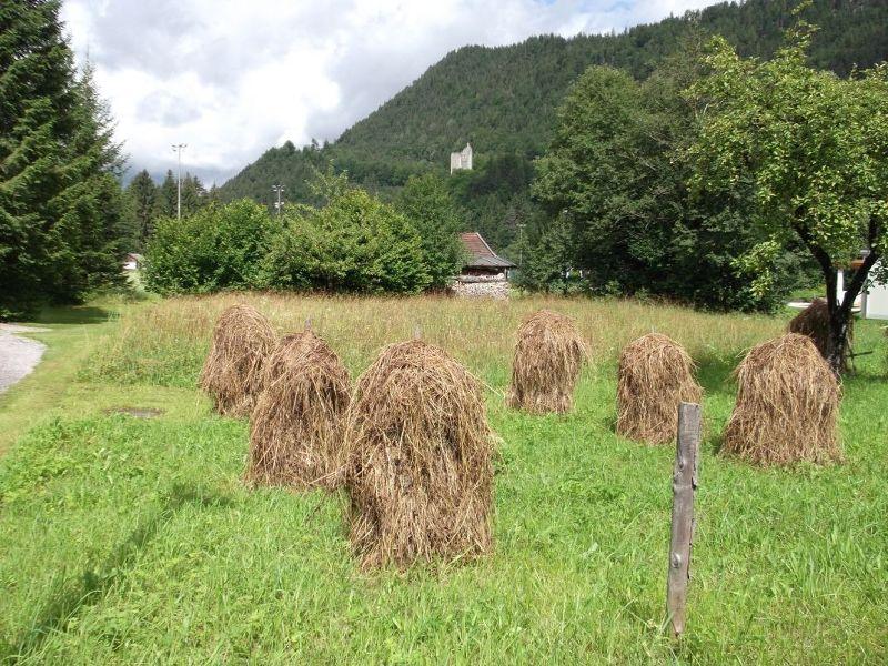 Haystacks in Vils. - Vils