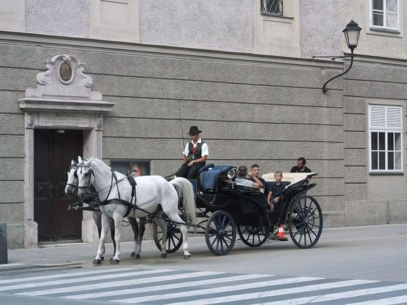 Fiaker. - Salzburg