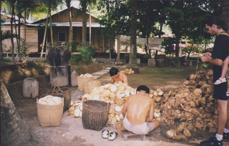 large_6751361-Mekong_Delta_Ho_Chi_Minh_City.jpg