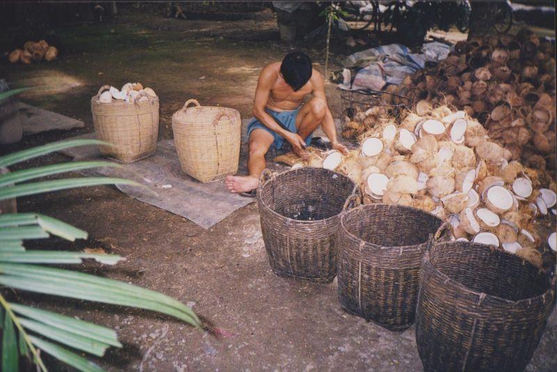 large_6751362-Mekong_Delta_Ho_Chi_Minh_City.jpg