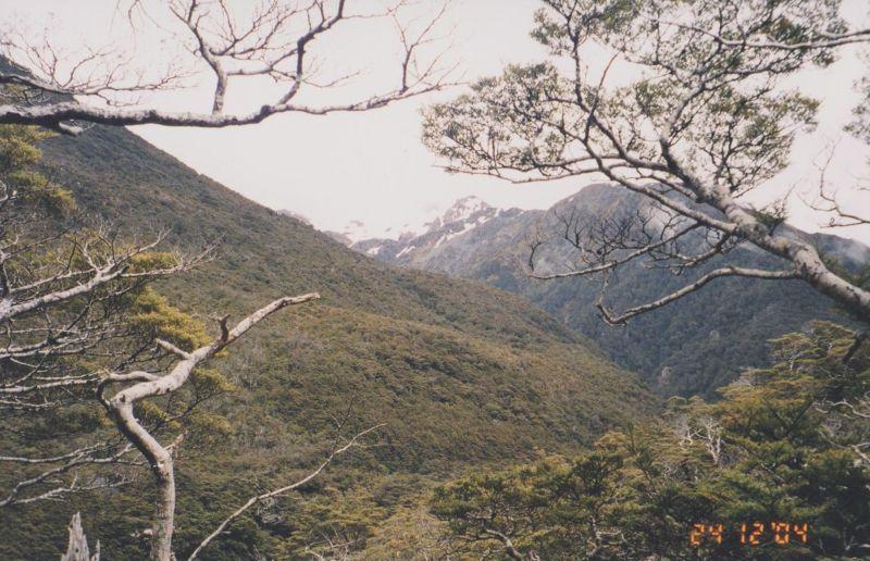 large_6763598-Arthurs_Pass_New_Zealand.jpg