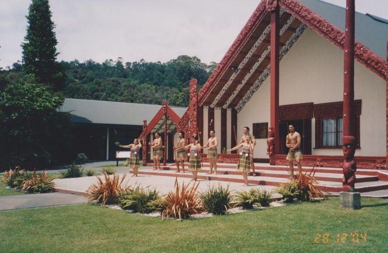 large_6763627-Maori_building_style_New_Zealand.jpg