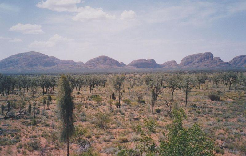 large_6765478-The_Olgas_Alice_Springs.jpg