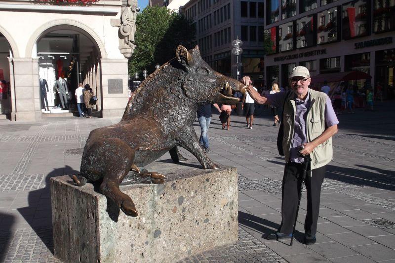 Wild boar. - Munich