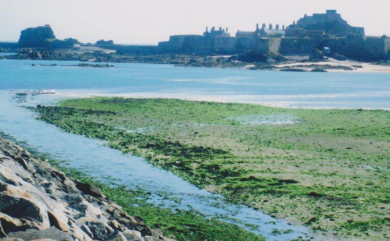 Elizabeth Castle. - Jersey