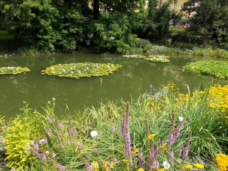 large_7138800-The_Botanic_Gardens_Zagreb.jpg