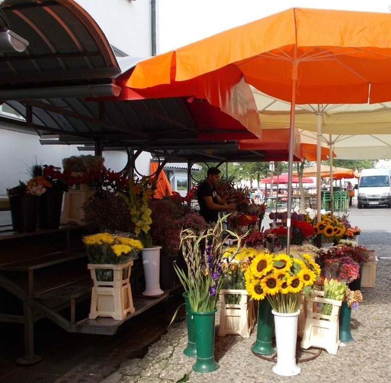The Market - Ljubljana