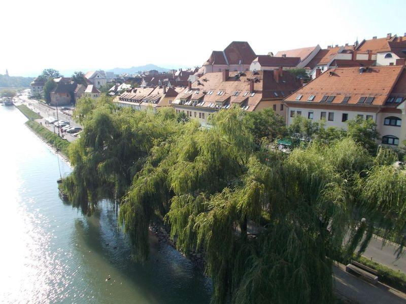 The Drava River - Maribor