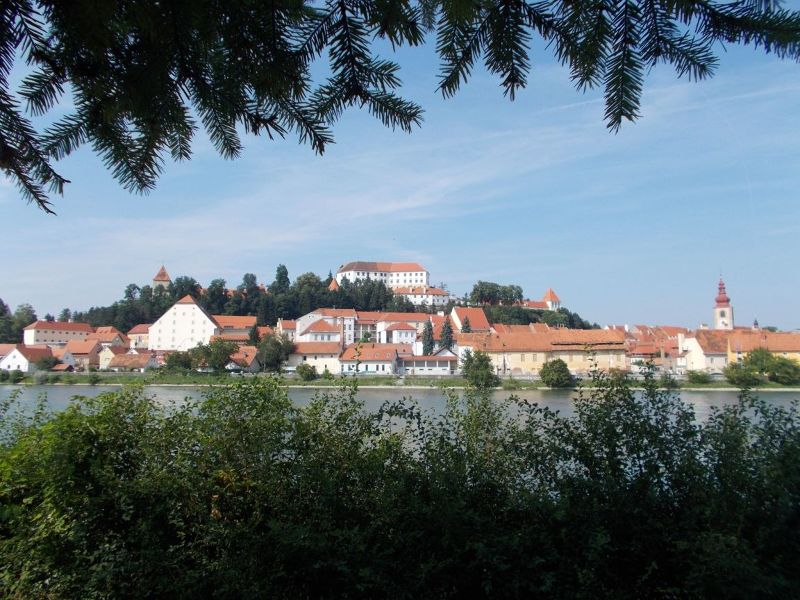 View over old town of Ptuj. - Ptuj