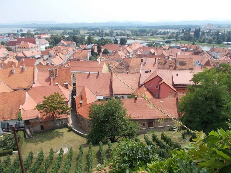 Views from the castle - Ptuj