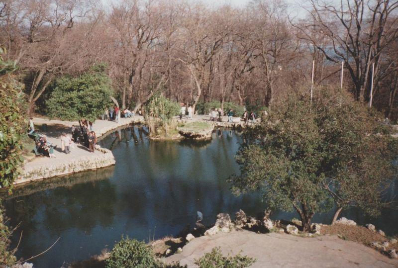 large_7189375-Pond_Emirgan_park_Istanbul.jpg