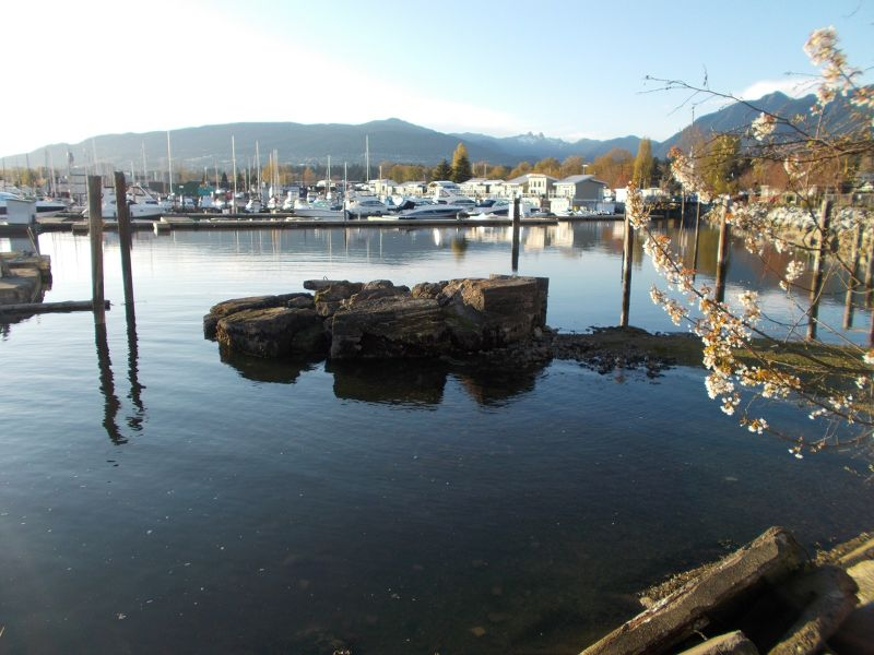 large_7354204-Around_Lonsdale_Quay.jpg