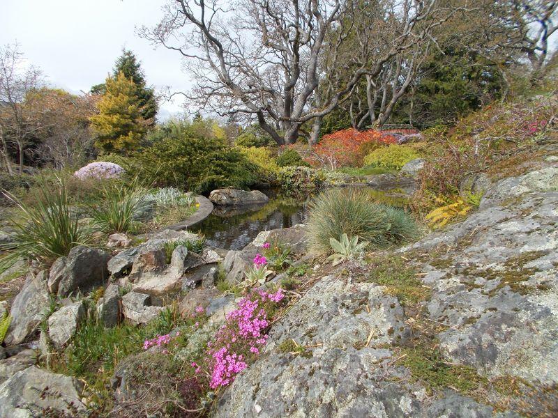large_7355997-The_Abkhazi_Gardens_Victoria.jpg