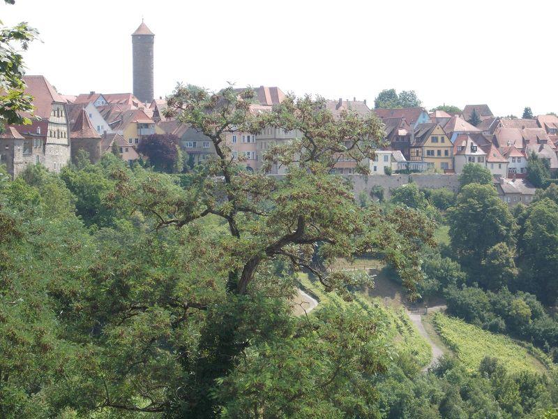 Burgarten - Rothenburg ob der Tauber