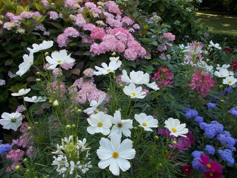 The Old Botanic Gardens - Munich