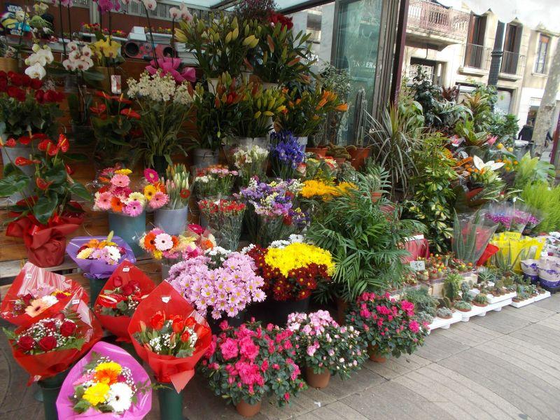 Flower stall, La Rambla. - Barcelona