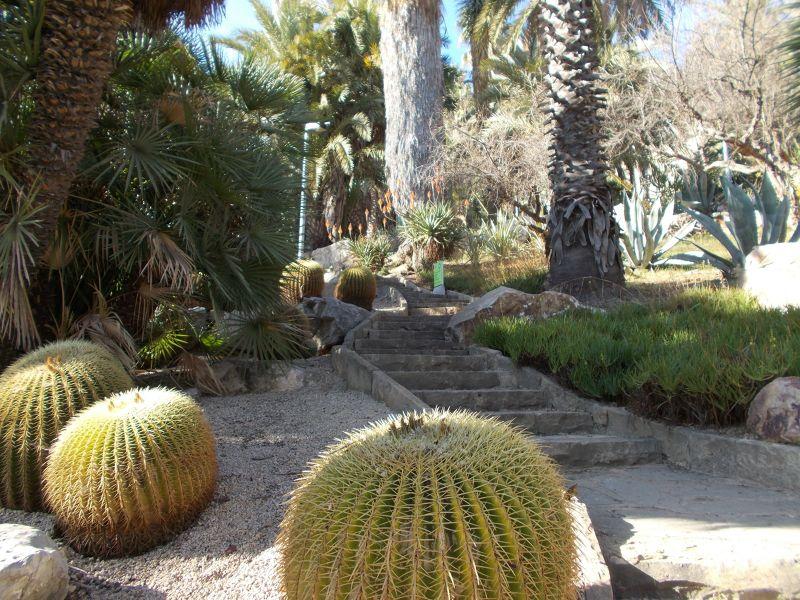 Montjuic -Cactus Garden. - Barcelona