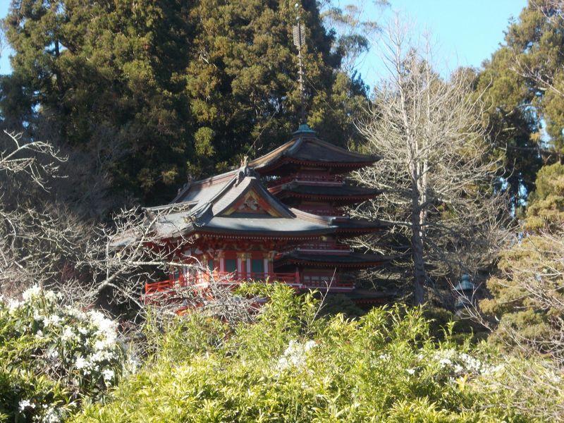 large_7575771-Japanese_Tea_Garden_San_Francisco.jpg