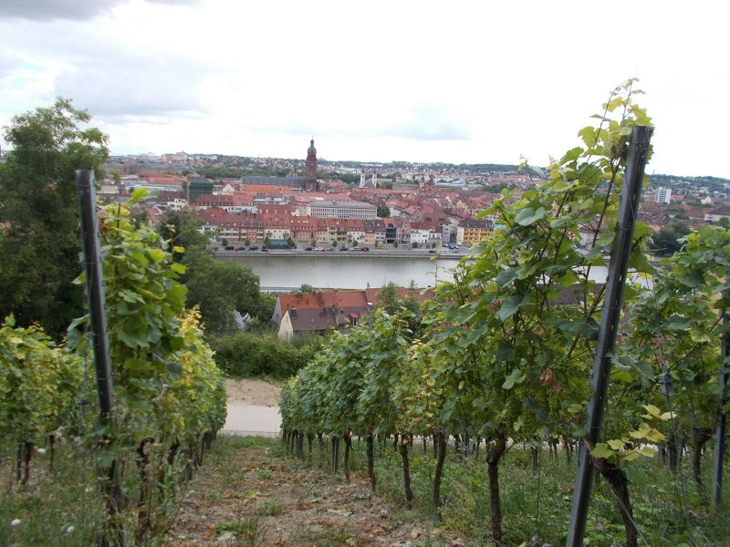 Overlooking the town. - Würzburg