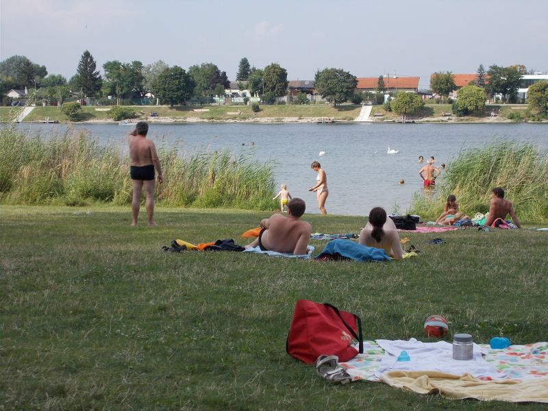 Swimming in the old Danube. - Vienna