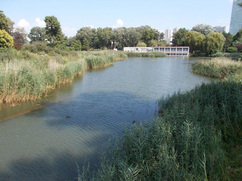 The lake. - Vienna