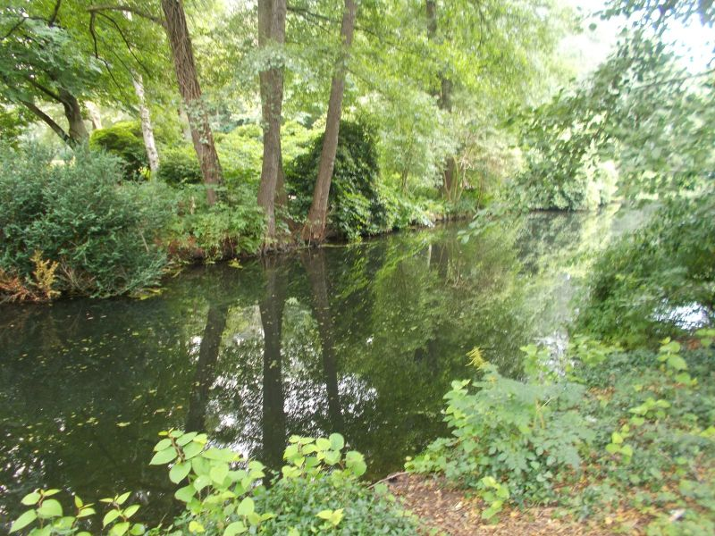 Lake in the Tier Garten. - Berlin