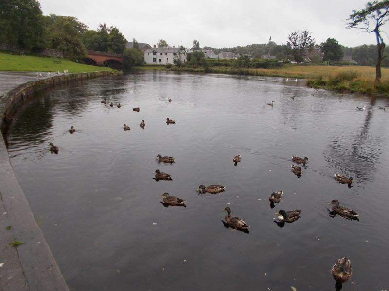 The River Teith. - Callander.