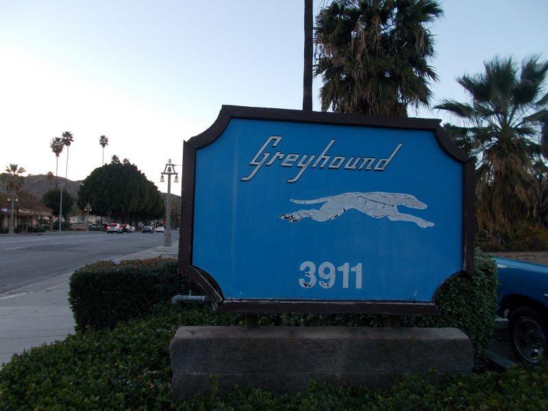 Greyhound Buses - Riverside