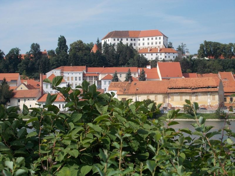 large_861480037146268-View_back_to.._town_Ptuj.jpg