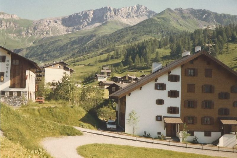 Traditional Alpine style buildings. - Liechtenstein