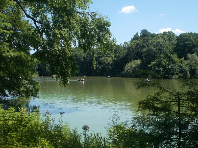Lake in Central Park.