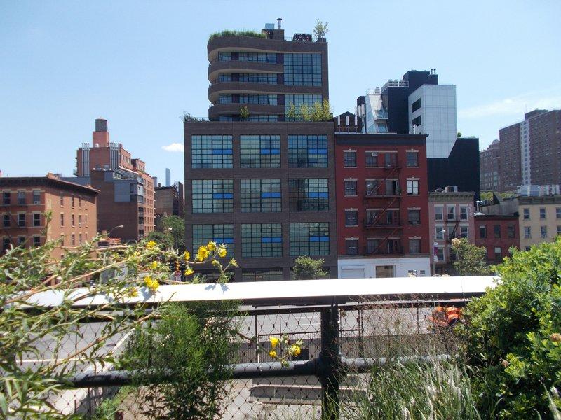 New York across flowers.