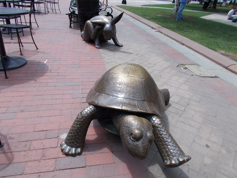 The Tortoise and the hare, Copley Square.