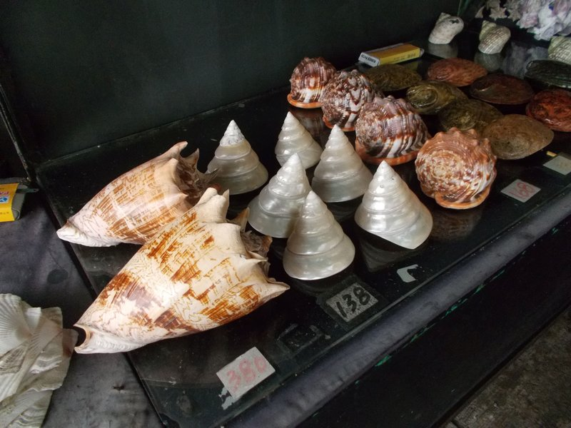 Shell based souvenirs.