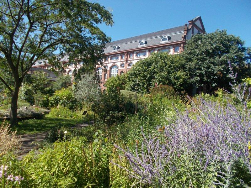 The Botanic Gardens.