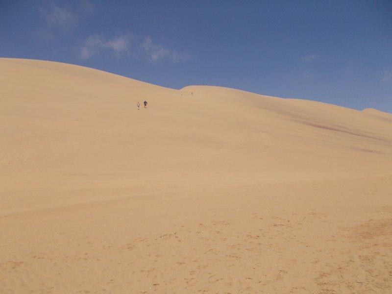The dune I climbed.