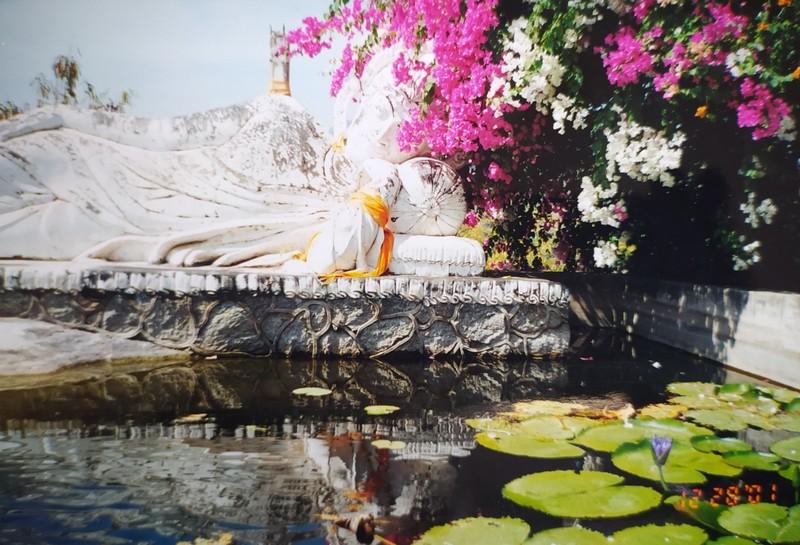 Buddah images half hidden in flowers.
