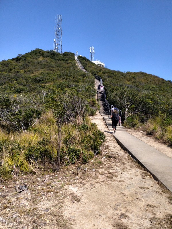 The final set of stairs to the top.
