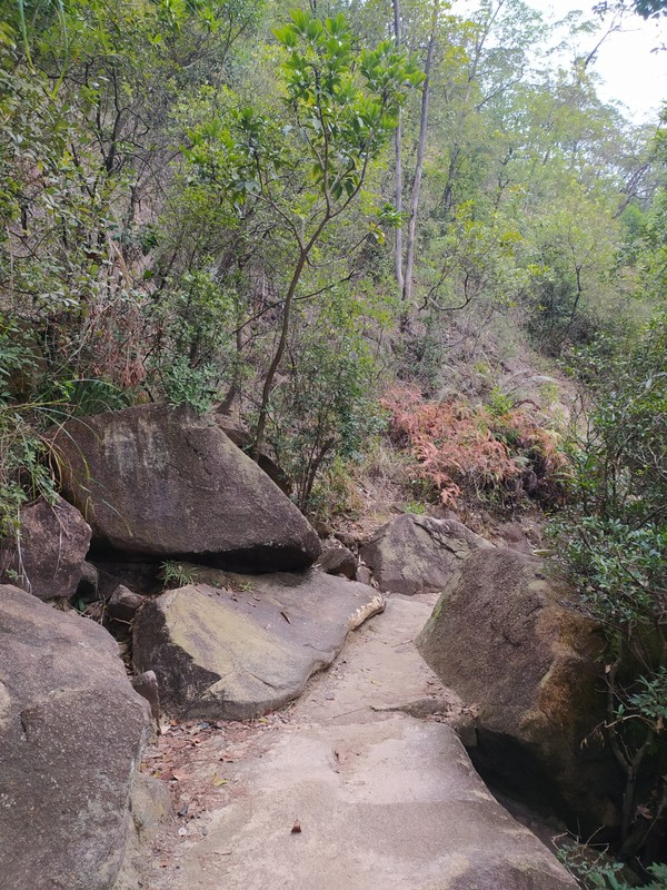 Path over Smugglers' Ridge.